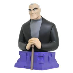 Batman del Futuro Busto Bruce Wayne 15 cm