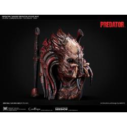 El Depredador busto 1/1 Kagero Predator 64 cm