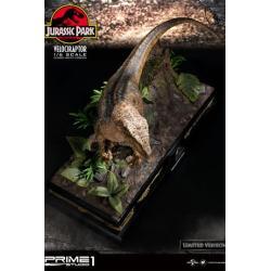 Jurassic Park Estatua 1/6 Velociraptor Closed Mouth Ver. 41 cm