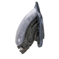 Alien Trofeo para colgar en la pared Xenomorph (goma espuma/látex) 78 cm