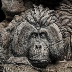 El Planeta de los Simios Statue Apes Through the Ages 29 cm