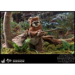 Wicket Sixth Scale Figure by Hot Toys Star Wars Episode VI: Return of the Jedi - Movie Masterpiece Series