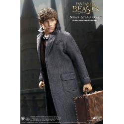 Animales fantásticos My Favourite Movie Figura 1/6 Newt Scamander Grey Coat Ver. 30 cm