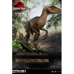 Jurassic Park Estatua 1/6 Velociraptor Closed Mouth Ver. 41 cm