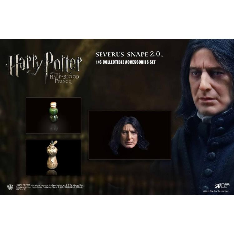 Harry Potter Pack Accesorios 2.0 para Figuras 1/6 Snape 1.0