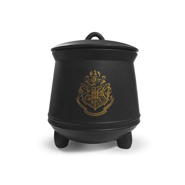 Harry Potter Storage Jar Cauldron